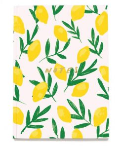 In-the-box-gifts-lemon-notebook-old-english-company-03