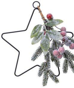 in-the-box-gifts-frosted-berry-star-christmas-decoration