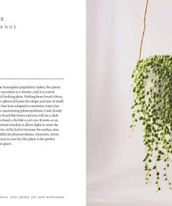 the-healing-power-of-plants-book-gift-002